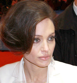 By Richard Hebstreit (angelina2) [CC-BY-2.0 (http://creativecommons.org/licenses/by/2.0)], via Wikimedia Commons